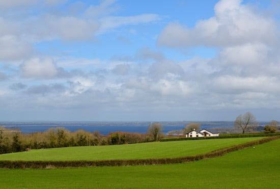 brookfield-farm-nenagh-tipperary-ireland