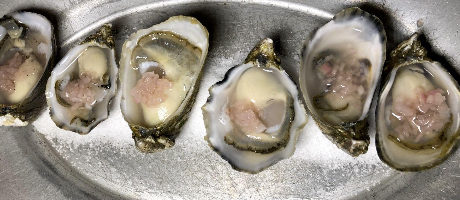 netarts-bay-oysters-thistle-oregon