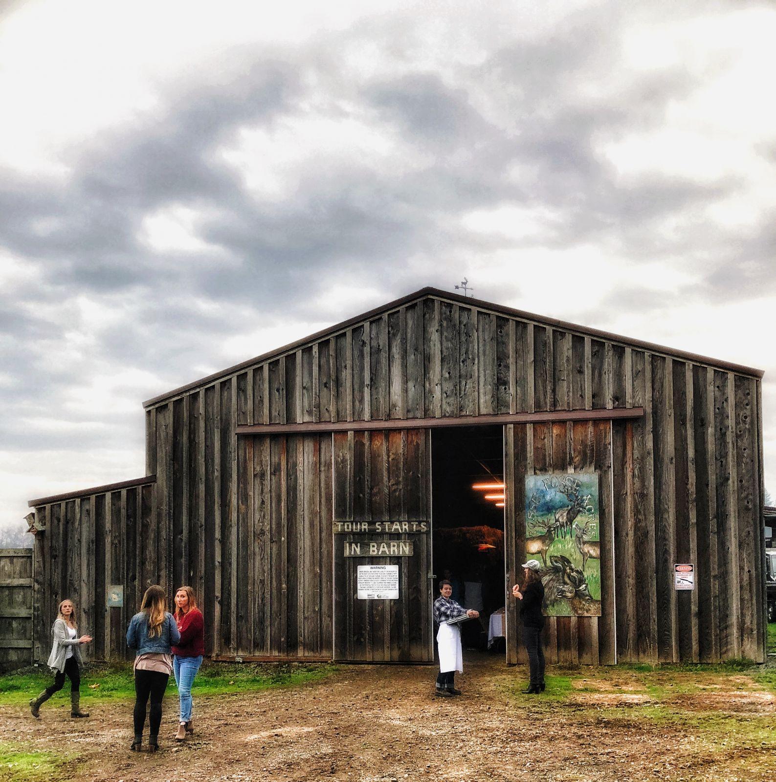 oregon-barn-party
