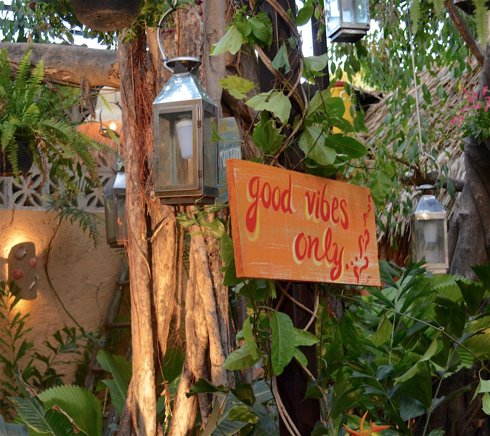 mario-canario-good-vibes-sign