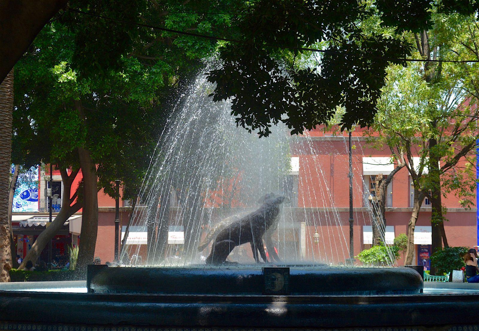 coyoacan-coyotes-fountain