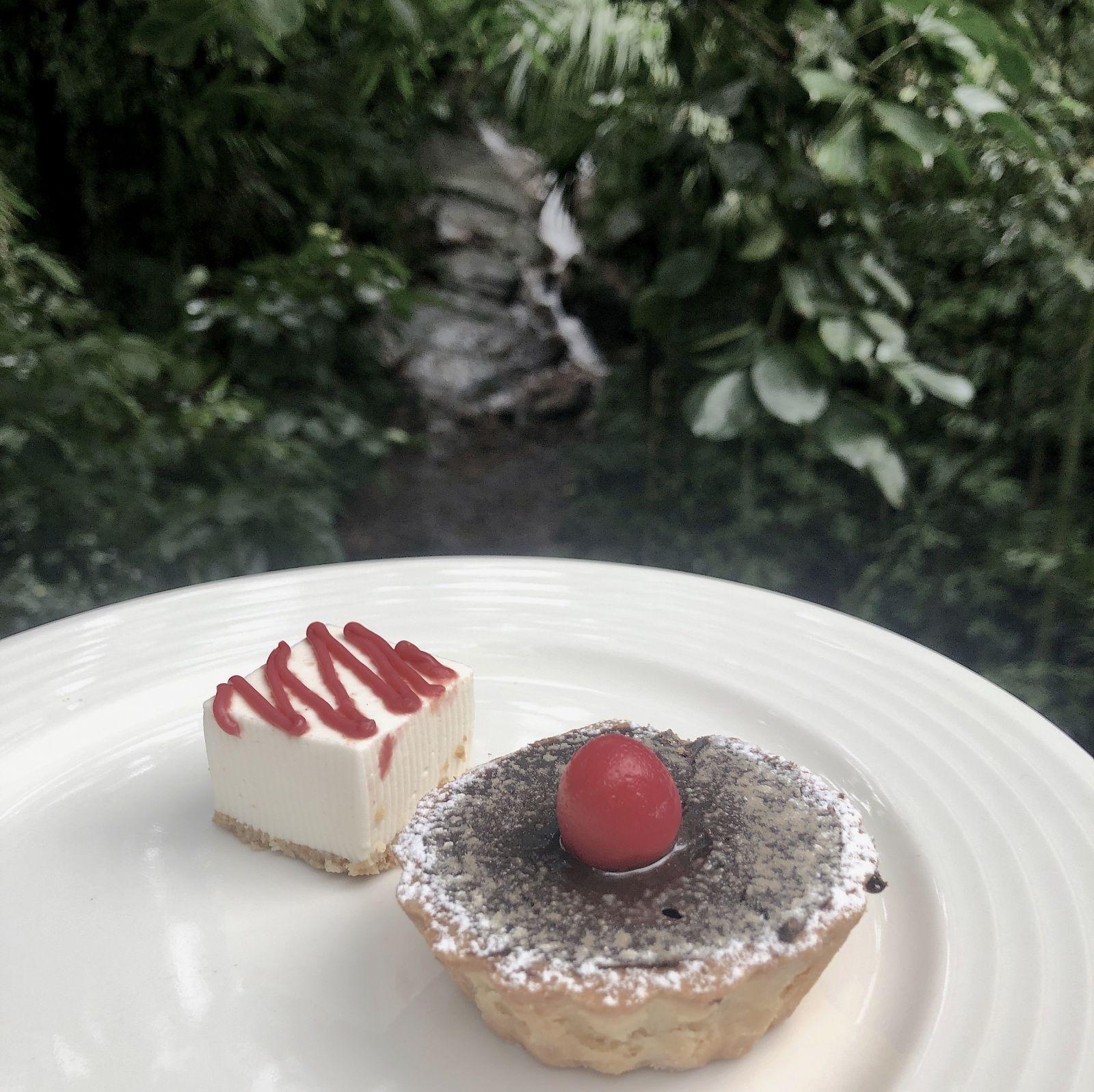 tamara-coorg-coffee-tart
