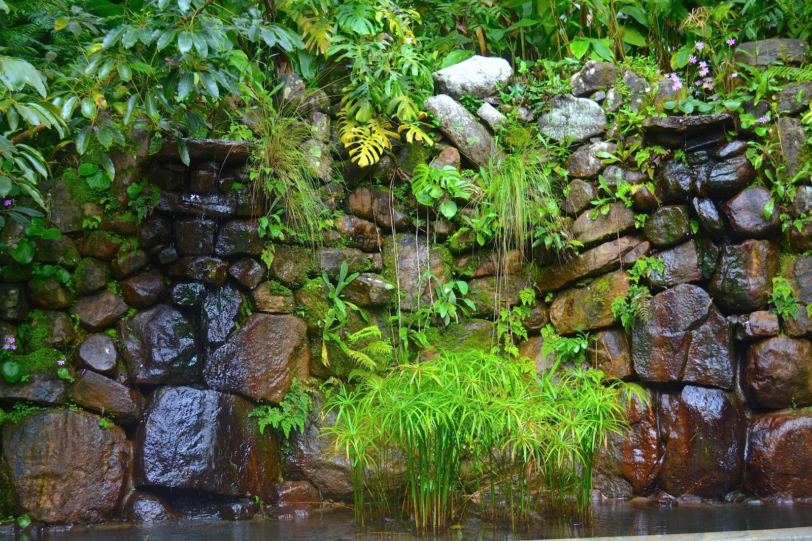 tamara-coorg-green-space