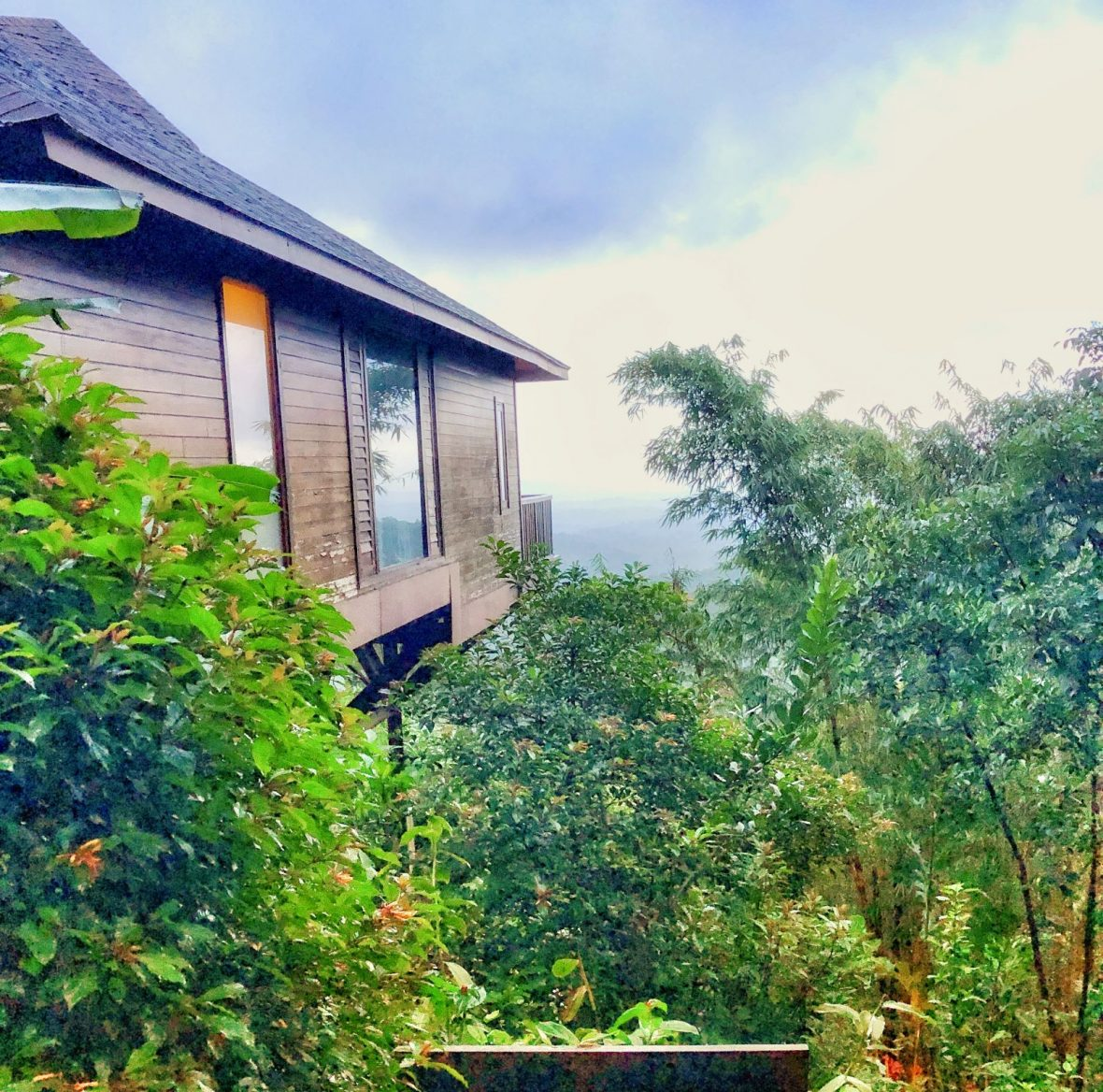 tamara-coorg-luxury-cottage-exterior-morning