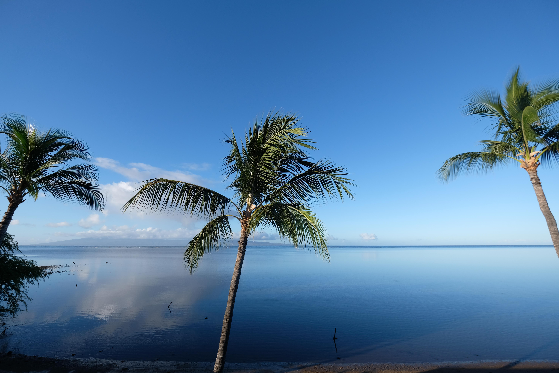 hotel-molokai-morning-hawaii